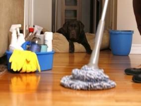 Dịch vụ vệ sinh nhà cửa tại Đống Đa